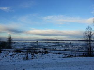 Anchorage-costaltrail.jpg