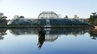 kew-Palm House pond.JPG